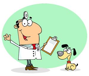 Veterinarska ambulanta IVAVET - zakazivanje termina